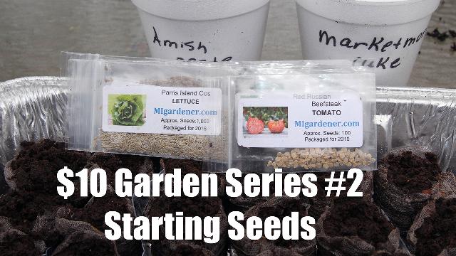 10 Garden Series 2 Starting Seeds Calikim Garden