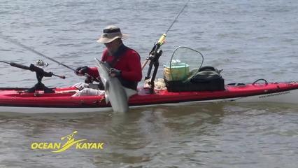 Shark Attack The Kayak Fishing Show