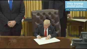 Tut irgendwie gut: Trump ganz klein