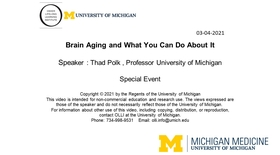 Brain Aging and What You Can Do About It