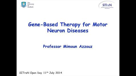 Thumbnail for entry Gene-based Therapy for Motor Neuron Diseases
