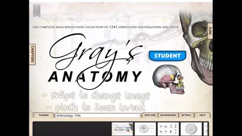 Thumbnail for entry ScHARR App Hack - Grays Anatomy