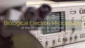 Thumbnail for entry Biological Electron Microscopy at the University of Sheffield