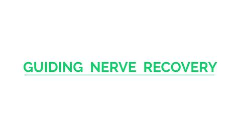 Thumbnail for entry Guiding Nerve Regeneration