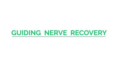 Thumbnail for entry Guiding Nerve Regeneration