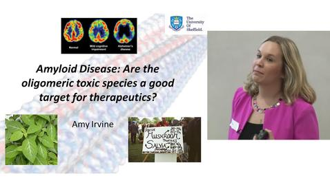 Thumbnail for entry Amyloid Disease: Are the oligomeric toxic species a good target for therapeutics?