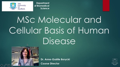 Thumbnail for entry MSc Molecular and Cellular Basis of Human Disease