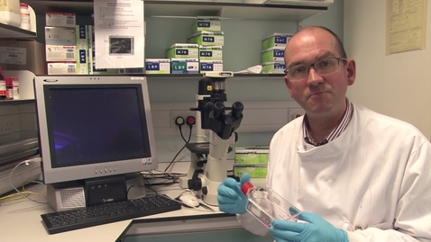 "Thumbnail for entry ""Bugs in your mouth"" with Dr Simon Whawell"