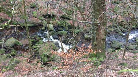 Thumbnail for entry Padley Gorge waterfall 2