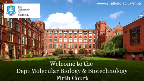 Thumbnail for entry Postgraduate study in Molecular Biology and Biotechnology