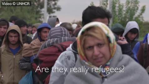 Thumbnail for entry Are they really refugees?