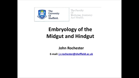 Thumbnail for entry Embryology of the  midgut and hindgut
