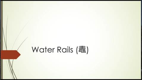 Thumbnail for entry Eikyū hyakushu Summer Poems: Water Rails