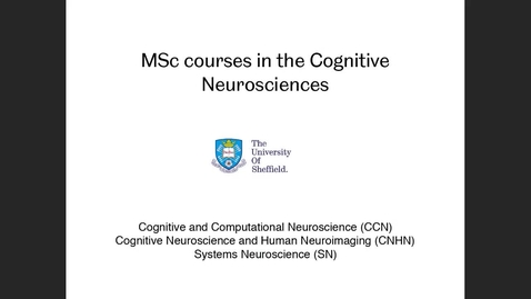 Thumbnail for entry Cognitive Neuroscience - Postgraduate Open Day 2021