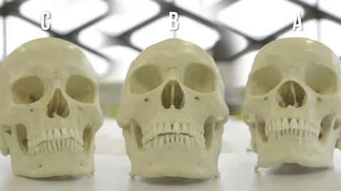 Thumbnail for entry Our demonstrators investigate: determining the ethnicity of a skull