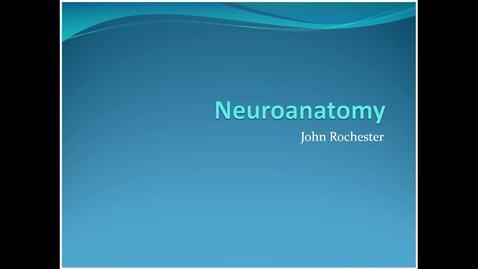 Thumbnail for entry Phase 2 neuroanatomy refresher 2