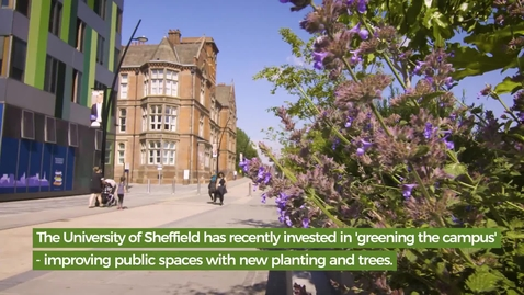 Thumbnail for entry Our Green Campus - main film