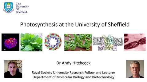 Thumbnail for entry Taster lecture - Photosynthesis