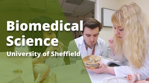 Thumbnail for entry Undergraduate study in Biomedical Science at Sheffield