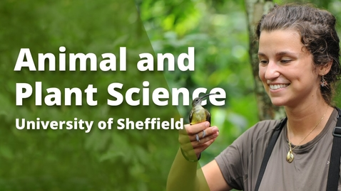 Thumbnail for entry Undergraduate study in Animal and Plant Sciences at Sheffield