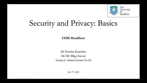 Thumbnail for entry Security and Privacy Basics