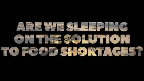 Thumbnail for entry Are we sleeping on the solution to food shortages?