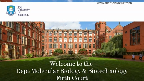 Thumbnail for entry Molecular Biology and Biotechnology - Postgraduate Open Day 2021