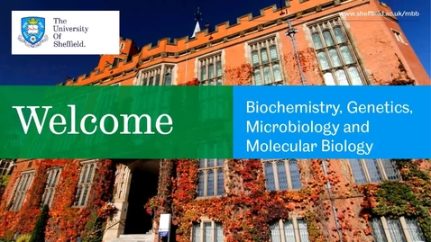 Thumbnail for entry Molecular Biology & Biotechnology - Applicant Day talk