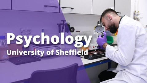 Thumbnail for entry Undergraduate study in Psychology at Sheffield