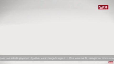 Thumbnail for entry Le sénat adopte la suppression de la pub dans les programmes pour enfants de France Télévisions