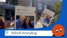 Thumbnail for entry Get the Library Bug...  #ShefLibraryBug