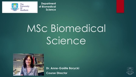 Thumbnail for entry MSc Biomedical Science