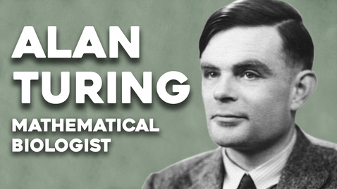 Thumbnail for entry Alan Turing, the mathematical biologist