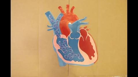 Thumbnail for entry Danbo Explains the Heart