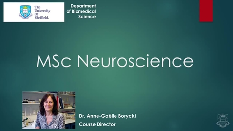 Thumbnail for entry MSc Neuroscience