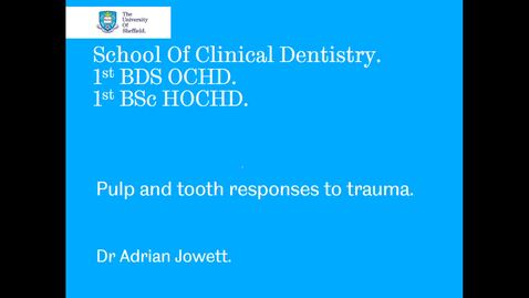 Thumbnail for entry Pulp and tooth responses to trauma
