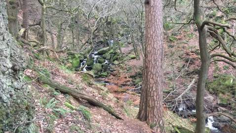 Thumbnail for entry Padley Gorge waterfall 3