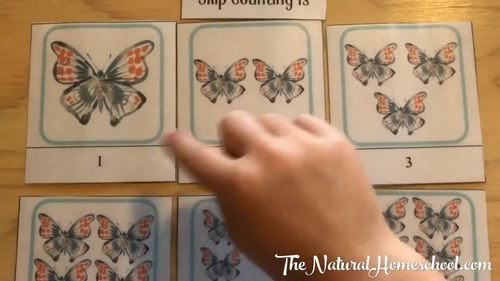 Montessori-Inspired Math Skip Counting 3-Part Cards {1s, 2s and 3s}