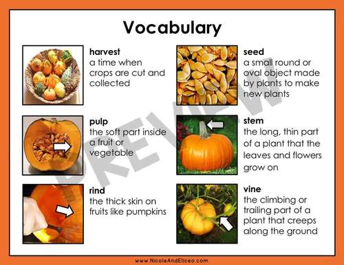 Pumpkin Reading Comprehension for Google Classroom