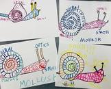 DISTANCE LEARNING! Draw Like an Artist+Scientist! VIDEO- B