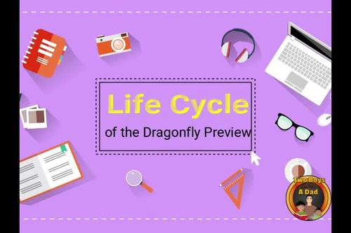Life Cycle of the Dragonfly Interactive Notebook Google Slides Distance Learning