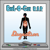 The Human Digestive System  - BioL-O-Gee R.A.P.