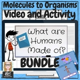 Human Cell Structure, Body Systems Video & Activities Kit