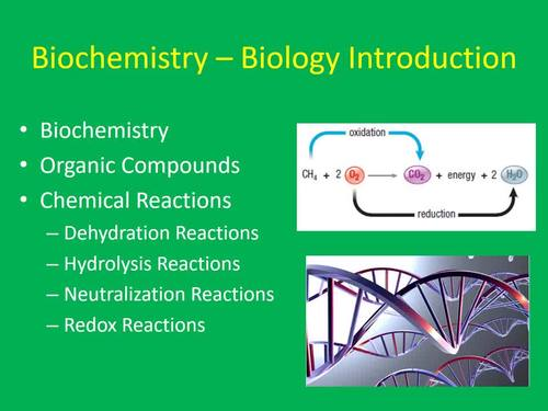 Biochemistry - Senior Biology Introduction PowerPoint Lesson and Notes