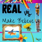 Real vs. Make-Believe |  Distance Learning & Teletherapy