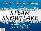 Crafts for Learning STEAM Snowflake Study