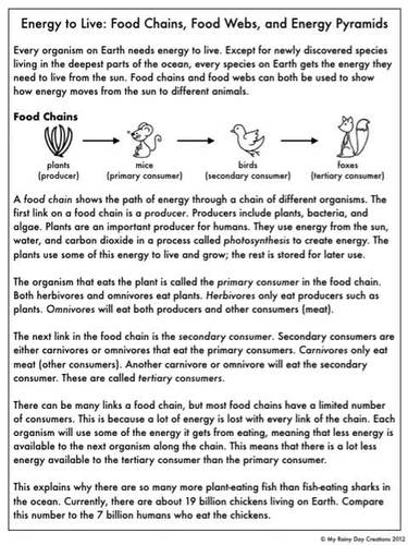 Food Chain Activities  EnchantedLearning additionally  also Rainforest Food Chain   Worksheet   Education also Pre Worksheets Age 4 Food Chain Worksheet Fascinating Free besides  further Food Chains  Food Webs  and Energy Pyramids  Reading Page and moreover Cooking Worksheets For Middle Reading Food Web High also Food Chain Printable Worksheets Food Chain Worksheet Grade Science moreover KS2 KS3 Science based VCOP  prehension Worksheets   Food Chains by likewise Food Chain Printable Worksheets Food Webs And Food Chains Worksheet furthermore Food Chains  Food Webs  and Energy Pyramids  Reading Page and as well  further  likewise Food Chain Facts  Worksheets  Species  Energy PDF Resource further 3rd grade  4th grade Science Worksheets  Food chains and webs additionally 8 Best Images of Food Chain Worksheet High   Food Web. on food chain reading comprehension worksheet