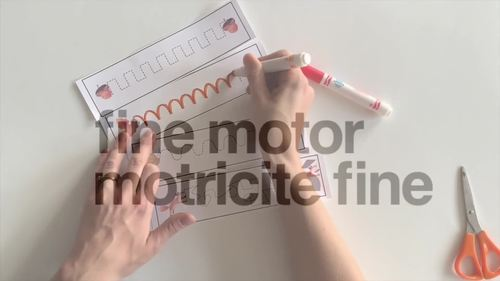 School Themed Fine Motor (Motricité Fine)