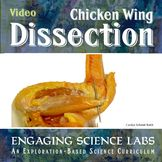 Bones and Muscles and Tendons Study: Chicken Wing Dissecti