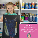 Distance Learning Teaching Video: How to Draw an Owl